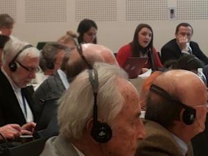 Representatives Ukraine at INGO COE